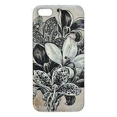 Flowers 1776382 1280 Apple Iphone 5 Premium Hardshell Case by vintage2030