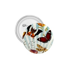 Butterfly 1064147 960 720 1 75  Buttons by vintage2030