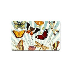 Butterfly 1064147 960 720 Magnet (name Card) by vintage2030