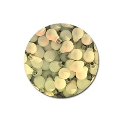 Bulbs Magnet 3  (round) by snowwhitegirl