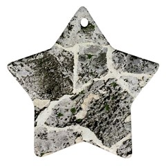 Coquina Shell Limestone Rocks Ornament (star)