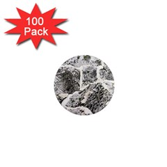 Coquina Shell Limestone Rocks 1  Mini Magnets (100 Pack)