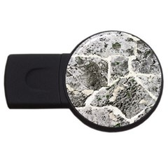 Coquina Shell Limestone Rocks Usb Flash Drive Round (2 Gb)