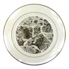 Coquina Shell Limestone Rocks Porcelain Plates