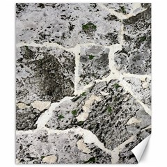 Coquina Shell Limestone Rocks Canvas 8  X 10