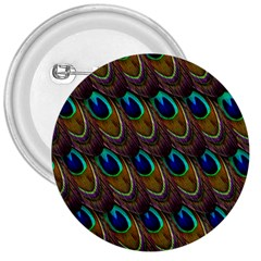 Peacock Feathers Bird Plumage 3  Buttons
