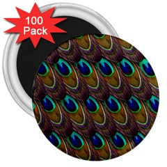 Peacock Feathers Bird Plumage 3  Magnets (100 Pack)