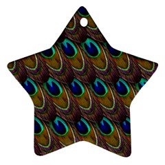 Peacock Feathers Bird Plumage Star Ornament (two Sides)