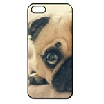 Pouty Pug case Apple iPhone 5 Seamless Case (Black)