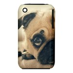 Pouty Pug case iPhone 3S/3GS