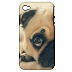 Pouty Pug case Apple iPhone 4/4S Hardshell Case (PC+Silicone)