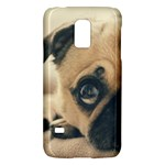Pouty Pug case Galaxy S5 Mini