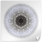 Dandelion Head Flower Mandala Canvas 16  x 16