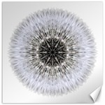 Dandelion Head Flower Mandala Canvas 20  x 20