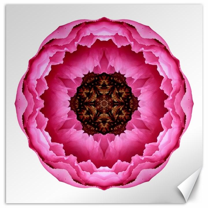 Pink Peony I Flower Mandala Canvas 16  x 16