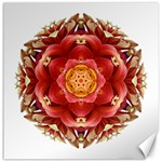 Red And Yellow Dahlia III Flower Mandala Canvas 16  x 16