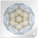 White Begonia II Flower Mandala Canvas 12  x 12