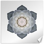 White Rose I Flower Mandala Canvas 16  x 16