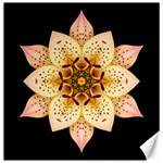 Asiatic Lily II Flower Mandala Canvas 12  x 12