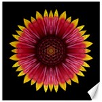 Galliardia Arizona Sun I Flower Mandala Canvas 16  x 16