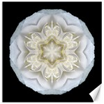 White Begonia II Flower Mandala Canvas 20  x 20