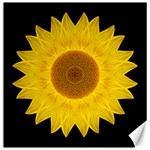 Yellow Sunflower II Flower Mandala Canvas 20  x 20