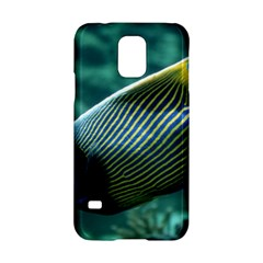 Angelfish 4 Samsung Galaxy S5 Hardshell Case  by trendistuff