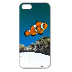 Clownfish 1 Apple Seamless Iphone 5 Case (clear)