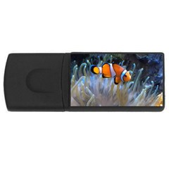 Clownfish 2 Rectangular Usb Flash Drive by trendistuff
