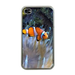 Clownfish 2 Apple Iphone 4 Case (clear)