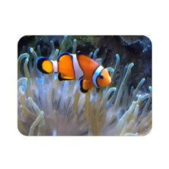 Clownfish 2 Double Sided Flano Blanket (mini)  by trendistuff