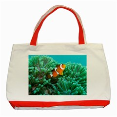 Clownfish 3 Classic Tote Bag (red) by trendistuff