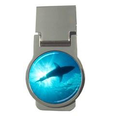 Great White Shark 6 Money Clips (round)  by trendistuff