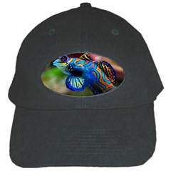 Mandarinfish 1 Black Cap by trendistuff