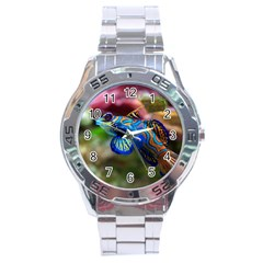 Mandarinfish 1 Stainless Steel Analogue Watch