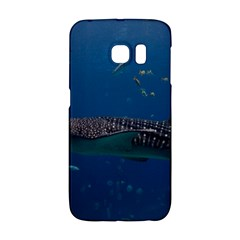 Whale Shark 1 Galaxy S6 Edge