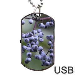 Blueberries 2 Dog Tag Usb Flash (two Sides) by trendistuff