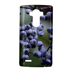 Blueberries 2 Lg G4 Hardshell Case by trendistuff