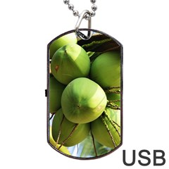 Coconuts 1 Dog Tag Usb Flash (one Side) by trendistuff