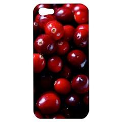 Cranberries 1 Apple Iphone 5 Hardshell Case by trendistuff