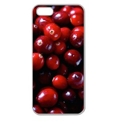 Cranberries 1 Apple Seamless Iphone 5 Case (clear) by trendistuff