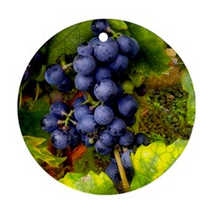 Grapes 1 Round Ornament (two Sides) by trendistuff
