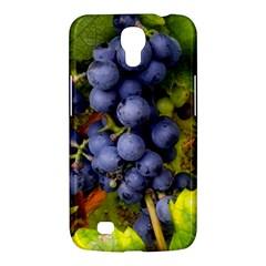Grapes 1 Samsung Galaxy Mega 6 3  I9200 Hardshell Case by trendistuff