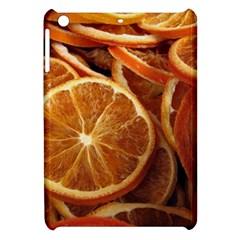 Oranges 5 Apple Ipad Mini Hardshell Case by trendistuff