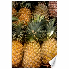 Pineapple 1 Canvas 20  X 30