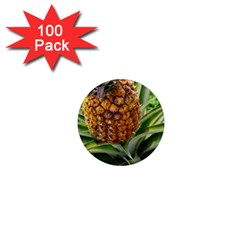 Pineapple 2 1  Mini Magnets (100 Pack)  by trendistuff