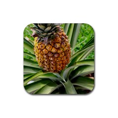 Pineapple 2 Rubber Square Coaster (4 Pack)  by trendistuff