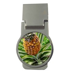 Pineapple 2 Money Clips (round)  by trendistuff