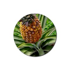 Pineapple 2 Rubber Round Coaster (4 Pack)  by trendistuff