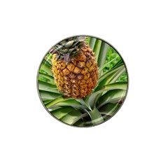 Pineapple 2 Hat Clip Ball Marker (10 Pack) by trendistuff